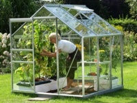 The Vitavia Venus (6' X 6') Greenhouse 3800