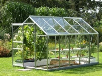 The Vitavia Venus (6' X 10') Greenhouse 6200